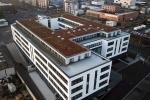 Obj24 Gründach, Bitumenabdichtung, Extensive Dachbegrünung